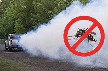 Vegyszerrel is irtják a szúnyogokat Komáromban