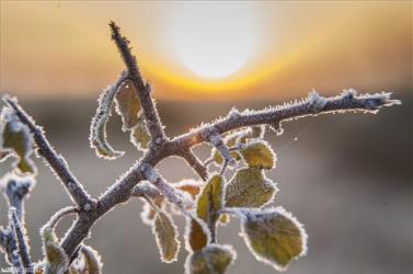 Hétfőn még hőségriadó volt, szerdán már talaj menti fagyokra figyelmeztetnek az országban!
