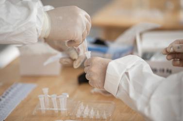 Vasárnap délig több mint 14 ezer személyen végezték el a koronavírus-tesztet, 380 pozitív eredmény lett