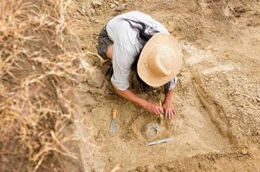 Újabb ókori szarkofágokat tártak fel az egyiptomi Szakkarában folyó nagyszabású ásatáson